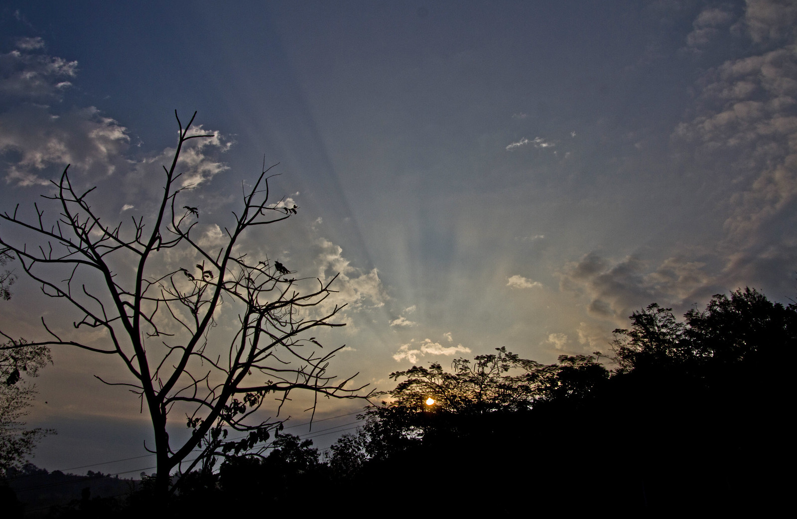 Sunrise_crop
