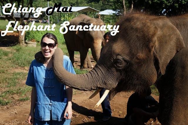 ElephantSancuaryDone