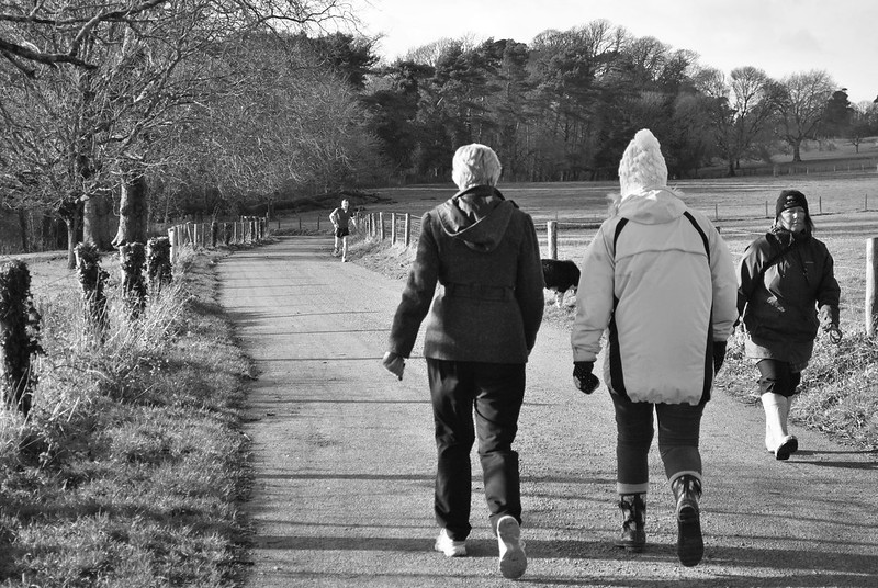 8 of 365 The Walkers of Saltram