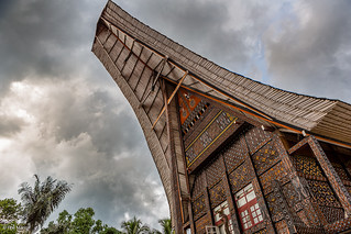 Front of traditional Torajan Tongkonan long houses - Tana Toraja, Sulawesi Indonesia