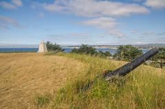 Fort Mervine