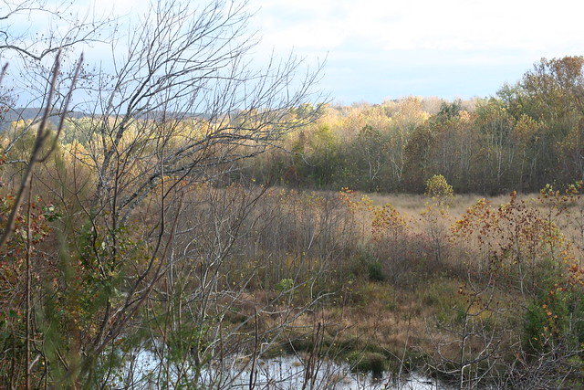 James River State Park Fall 2014 (343)