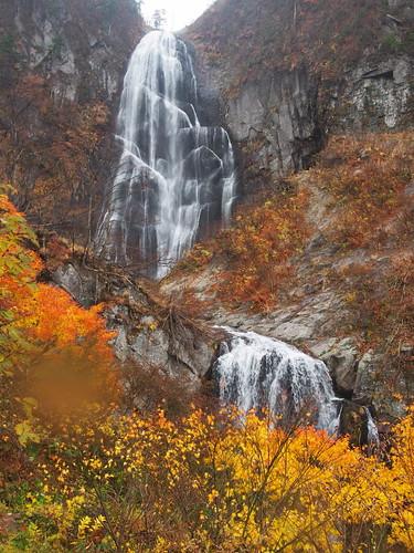 autumn japan waterfall tint falls valley 日本 紅葉 秋 cascade akita 秋田 滝 雨 北秋田 kitaakita 安の滝 yasunotaki 中ノ又渓谷
