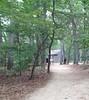 Thoreau's cabin, Concord, Mass