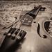 Violin by Paollus