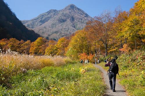 autumn leaves japan 日本 niigata 紅葉 秋 myoko 新潟 妙高 妙高高原
