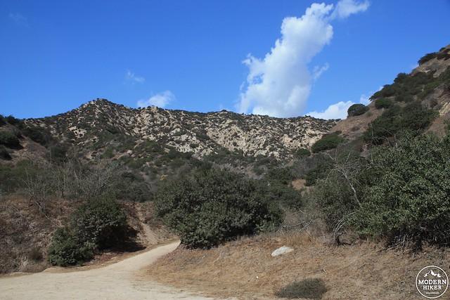 Glendale Peak 7