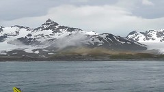 St. Andrews Bay, South Georgia - Largest King Penguin Colony in the World