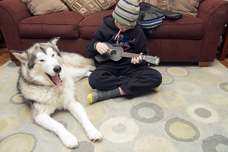 day 3800:  frida enjoys spending time with odin while he practices his ukulele.