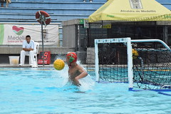 water & ball sports, water polo, swimming pool, sports, recreation, outdoor recreation, leisure, team sport, water sport, ball game,