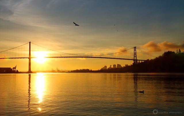 Vancouver New Year Sunrise