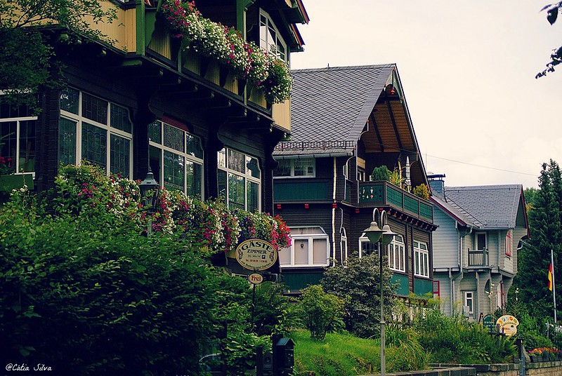 Alemania_Bad Schandau (8)