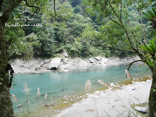 烏來景點內洞森林遊樂區 (8)