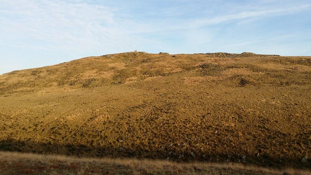 Steeperton Tor #dartmoor #sh