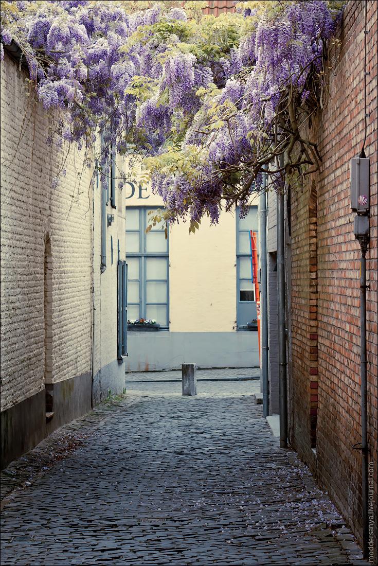 Bruges-21