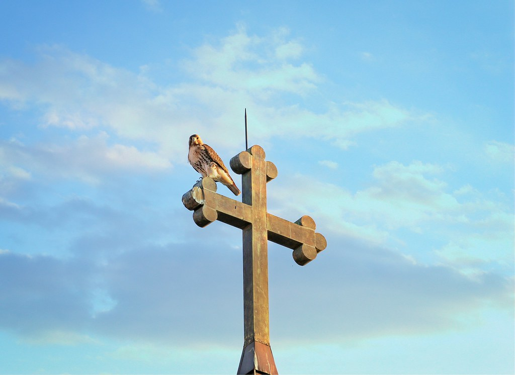 Christo atop St Brigids