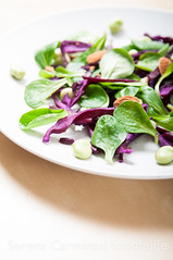 Corn salad with red cabbage, fava beans and apples…
