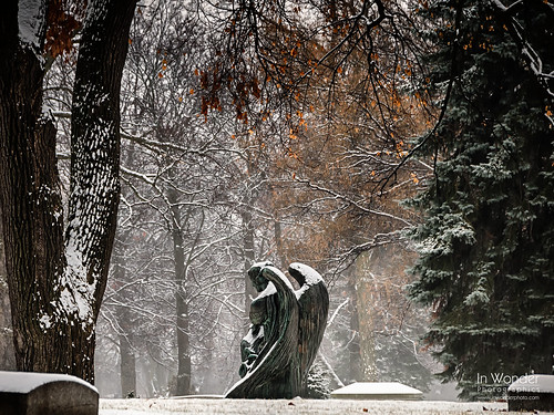 winter snow statue wisconsin angel bronze landscape nikon milwaukee foresthomecemetery robertingersollaitken markadsit