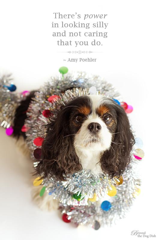 "12/12 ""Kodee"" Holiday Festive"