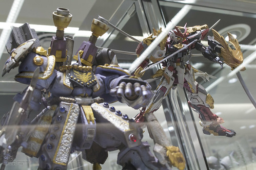 GBWC2014_World_representative_exhibitions-162