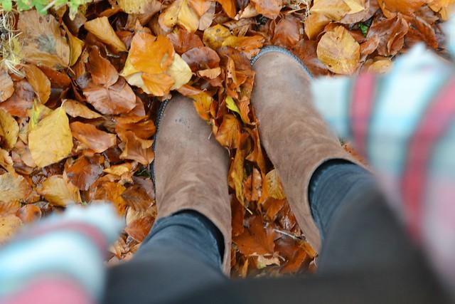 Ash footwear boots 4