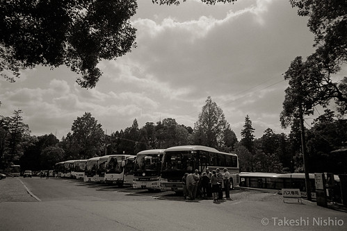 a lot of bus with visitors from abroad