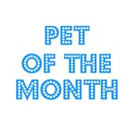 Do you want your pet to be featured? Click the image below for details.