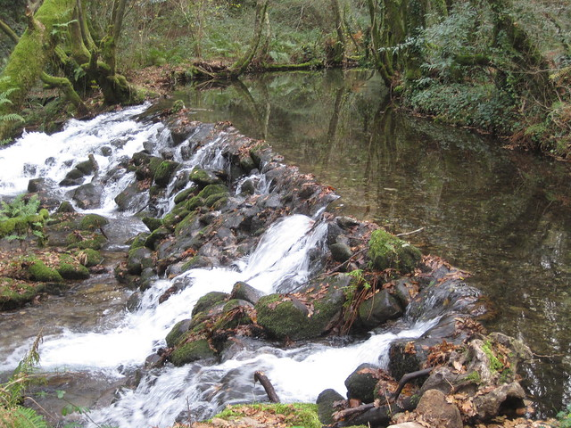 Represa en el río Xabriña