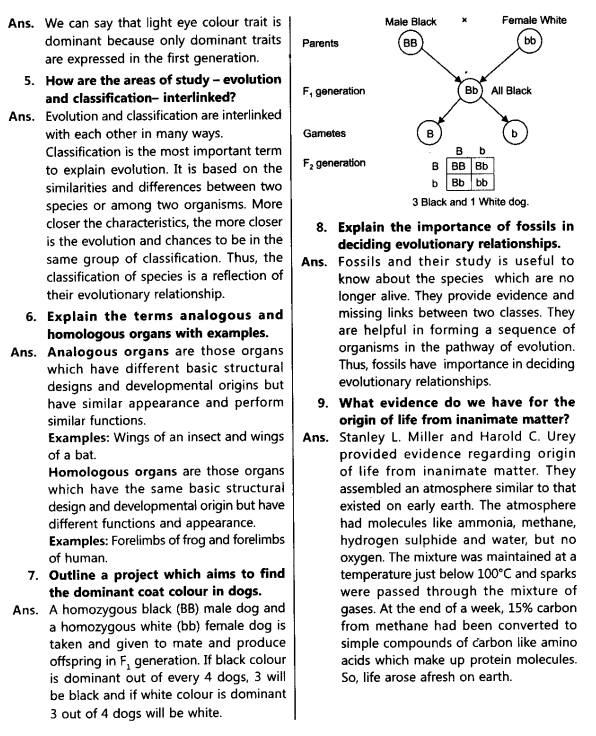 NCERT Solutions for Class 10th Science Chapter 9_2