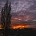dunav: Burning Sky