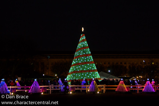 The National Christmas Tree display