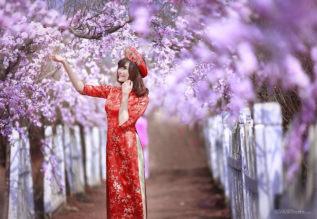 Th ch  Vi t Ho ng - Thanh Nhu00e0n