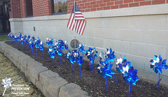 2016 Pinwheels for Prevention®