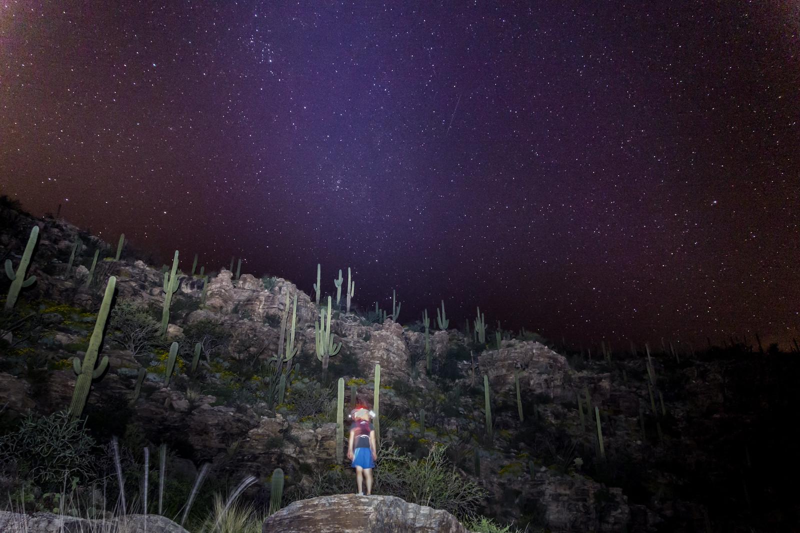 1503 Enjoying the Night in La Milagrosa Canyon