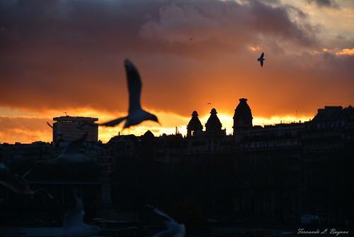 Kaos before sunset