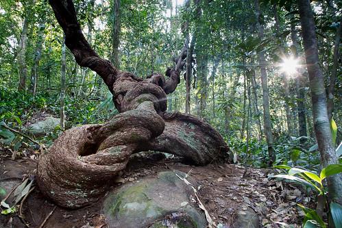 srilanka southernprovince
