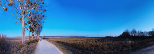 blue sky panorama tree nature way landscape hungary zala 2015