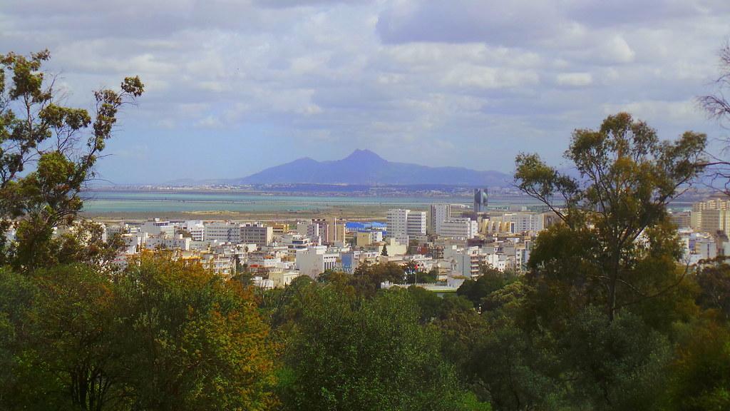 Tunis vue du Belvédère, Tunisie