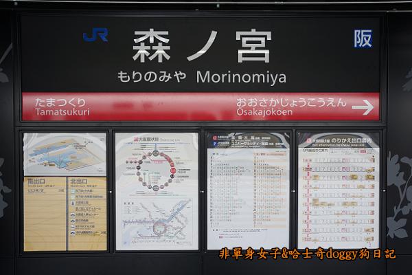 日本JR地鐵電車便當06