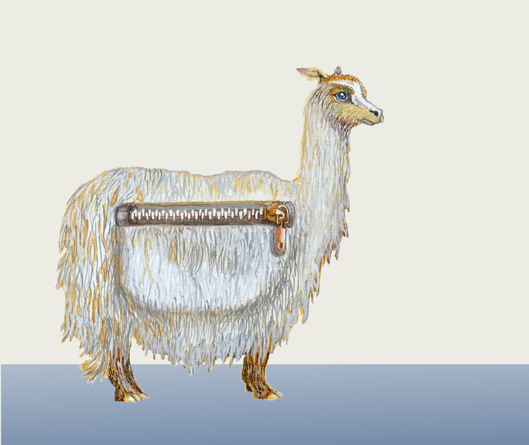 Pack Alpaca on Society6