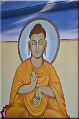 Double Colour-Buddha
