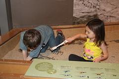 Jovie and Olsen dig for fossils 1