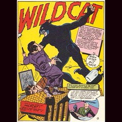 Wildcat! #comics