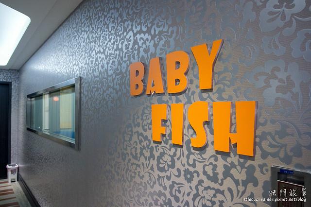 Baby Fish (1)