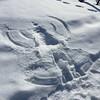 #lumienkeli #saariselka #snowcat #saariselkabooking