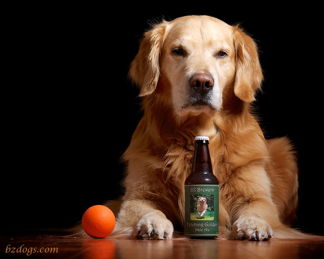 Fetching Golden Pale Ale
