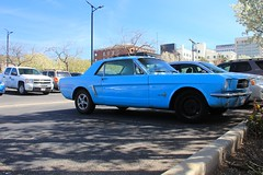 automobile, automotive exterior, wheel, vehicle, first generation ford mustang, land vehicle, muscle car,