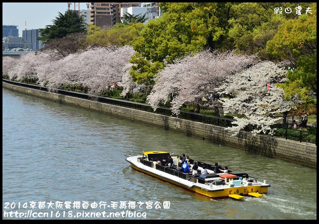 2014京都大阪賞櫻自由行-毛馬櫻之宮公園DSC_2128