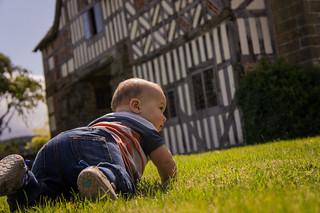 Dom exploring