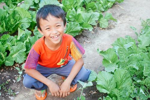 Despite recent burglary, Myanmar program enjoys new diversification of farmland enterprise